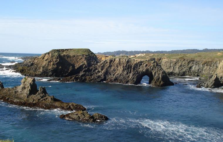 Dog Friendly Camping Mendocino
