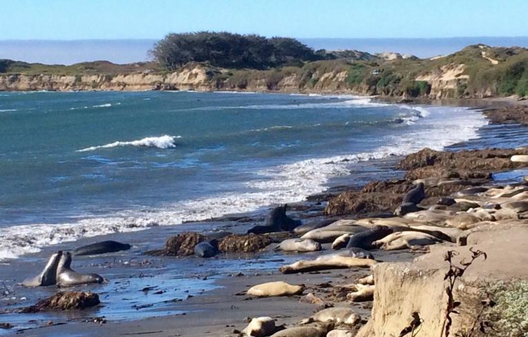 Santa Cruz County Day Trips