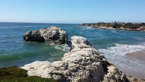 Santa Cruz County Day Trips