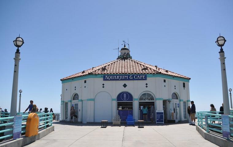 Roundhouse Aquarium Manhattan Beach Pier