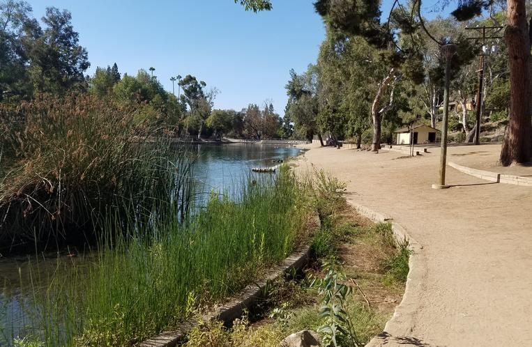 Laguna Lake Park Fullerton California