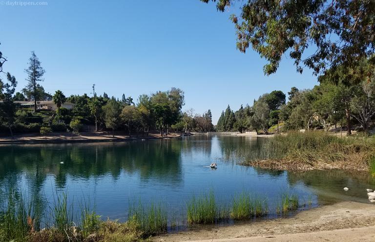 Laguna Lake Park Fullerton Day Trip