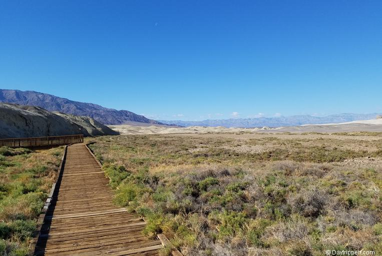 Salt Creek Boardwalk Death Valley