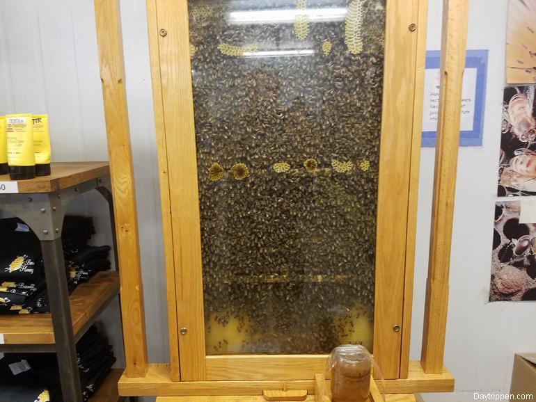 Bennett's Honey Farm Bee Hive