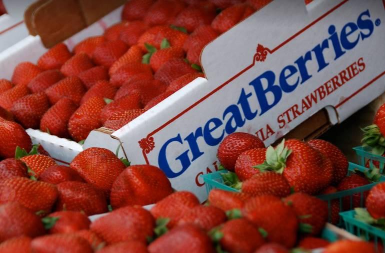 California Strawberry Festival