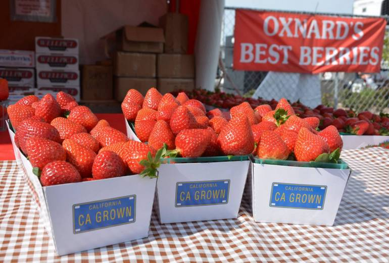 Oxnard Strawberry Festival