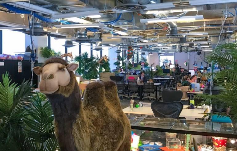 Zappos Headquarters Tour Las Vegas