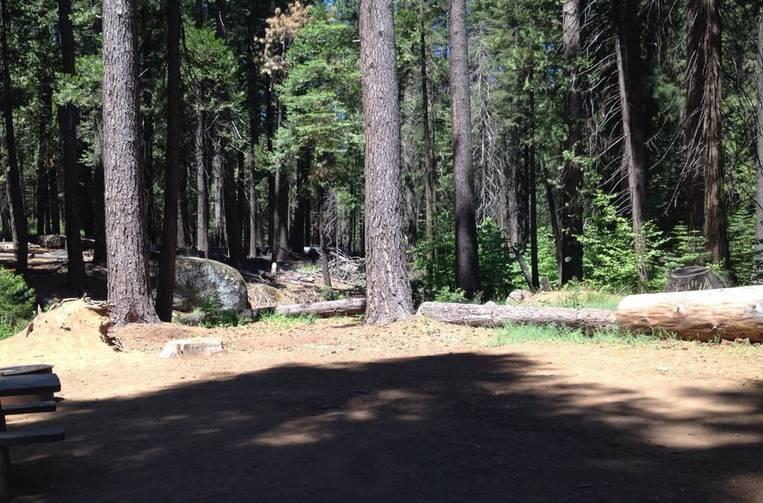 Calaveras Big Trees State Park Campsite