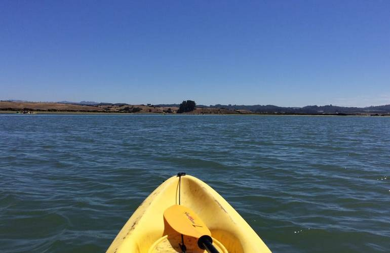 Kayacking Tours In Monterey Bay