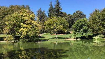 UC Davis Arboretum Day Trip