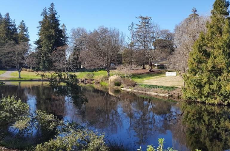 Davis California