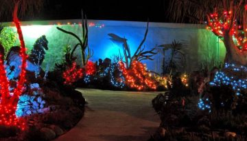 Garden of Lights Encinitas