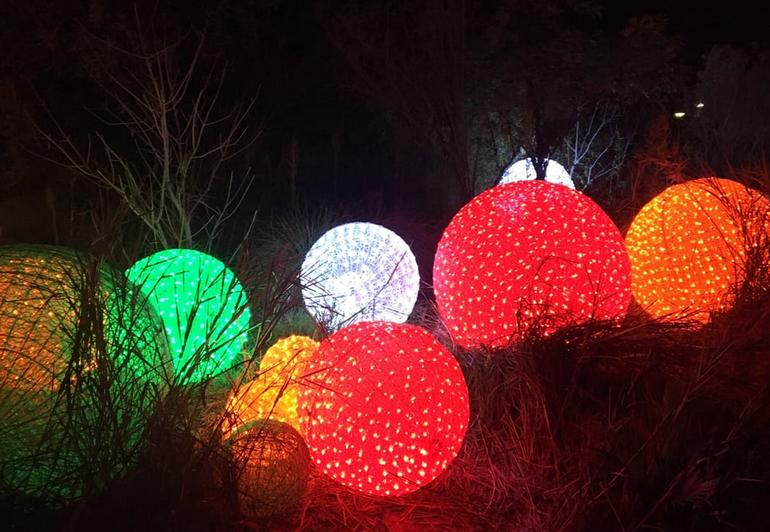 L.A. Zoo Lights Holiday Event