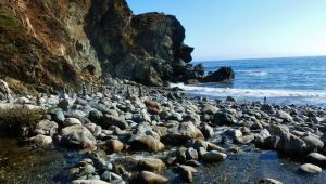 Limekiln Beach State Park Camping Day Use