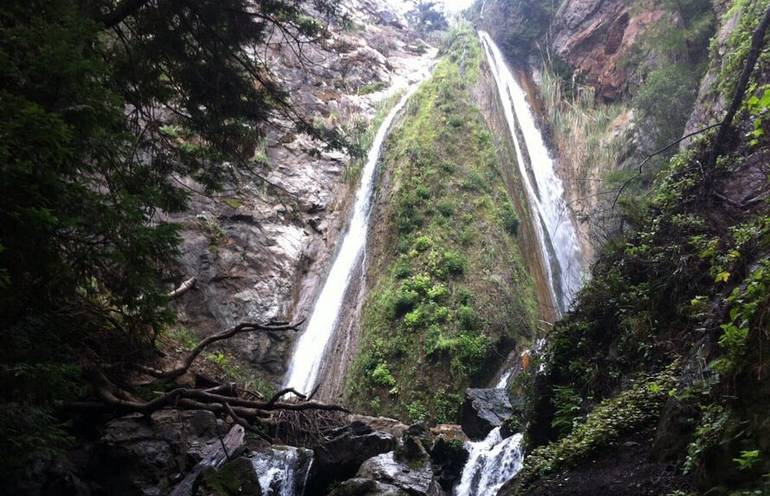 Limekiln State Park Waterfall
