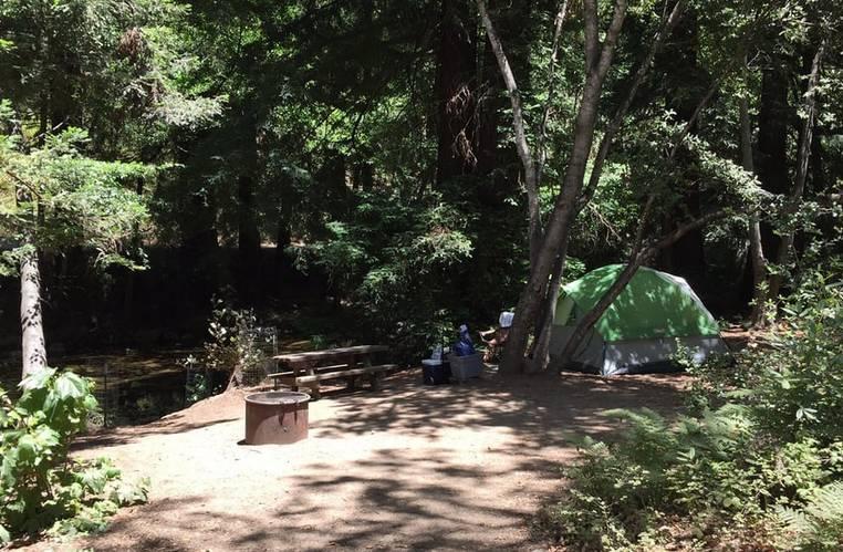 Pfeiffer Big Sur State Park Campground