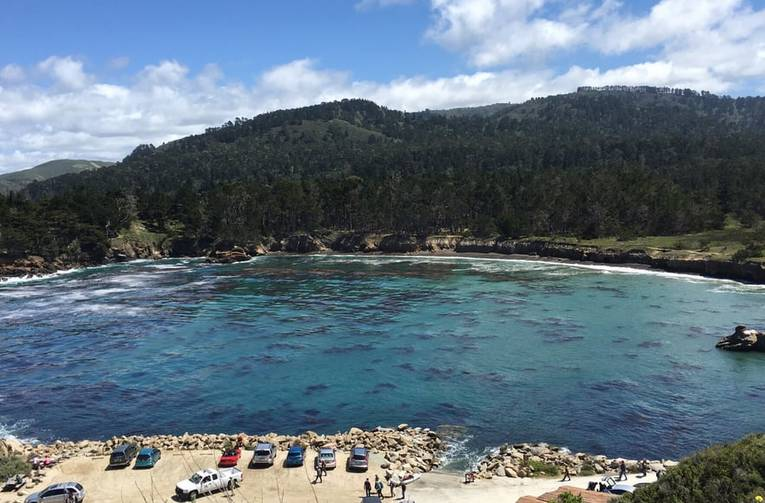 Point Lobos State Natural Reserve Whaler's Cove