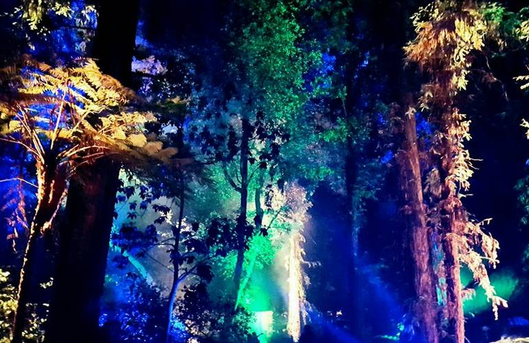 Discount Tickets Enchanted Forest Descanso Gardens