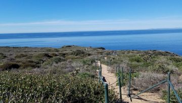 Day Trip to Dana Point Headlands Nature Preserve