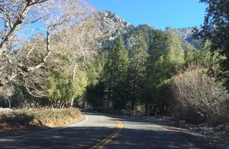 Mt Baldy Road