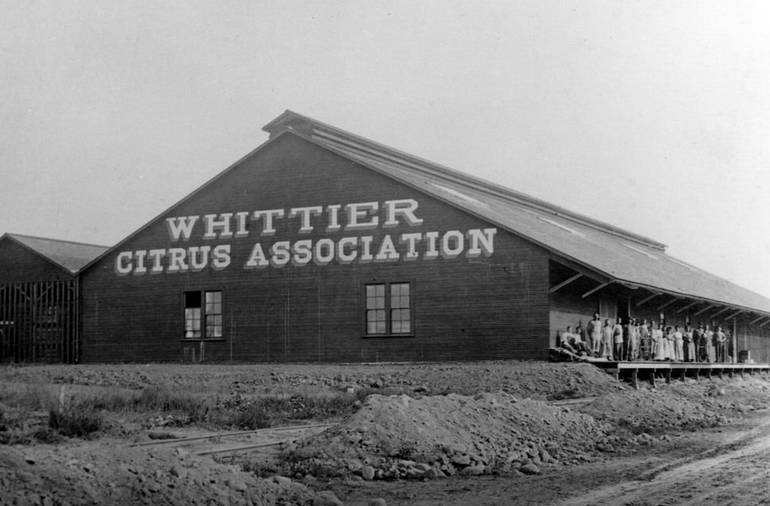 Original Whittier Citrus Packing House King Richard's Antique Center