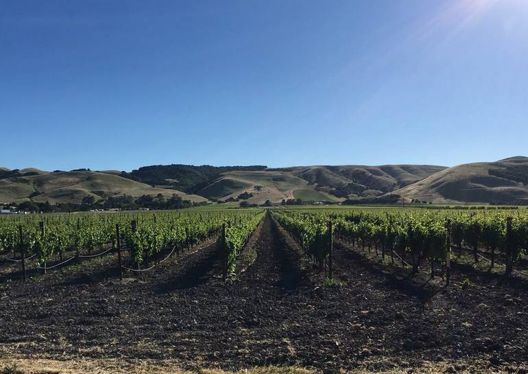 Sonoma Valley Things To Do and See