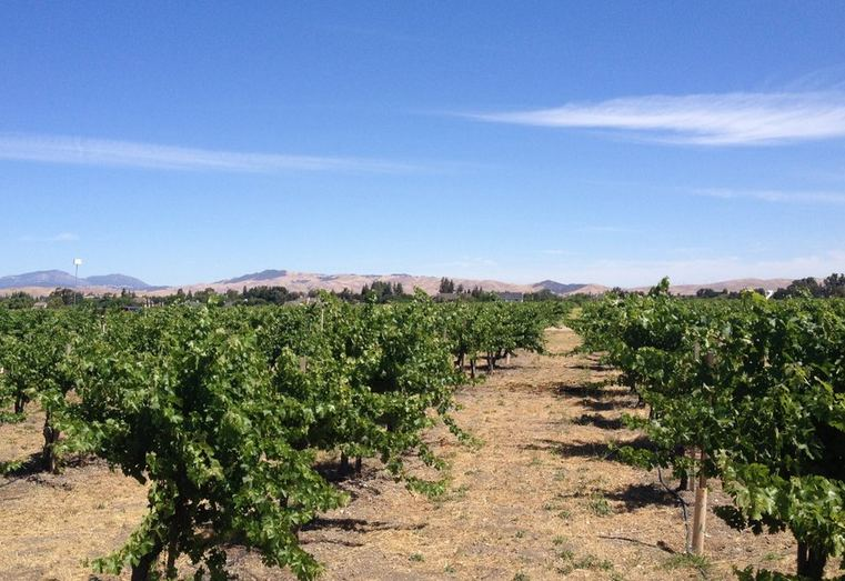 Day Trip to Livermore California