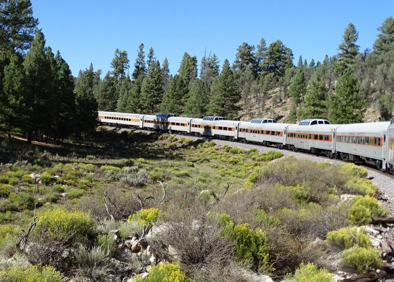 View Dome Cars