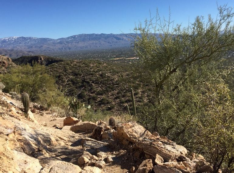 View of Tucson From the Santa Catalina Mountains
