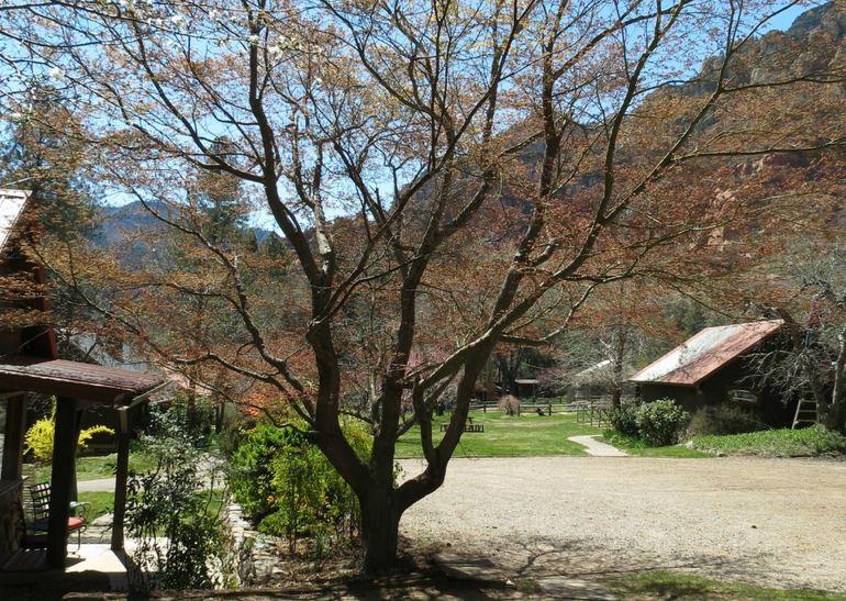 Orchard Canyon at Oak Creek