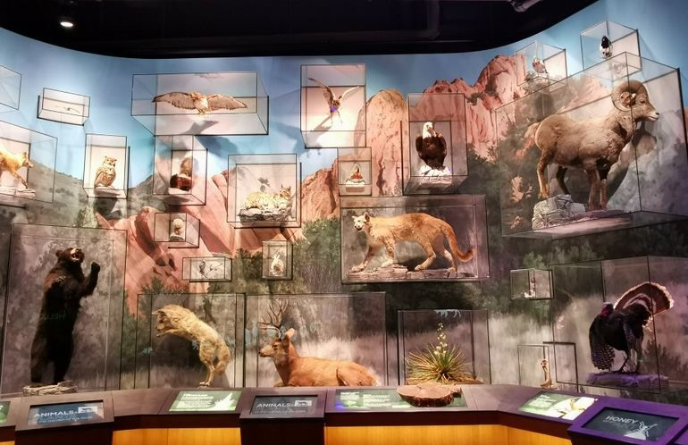 Visitor Center Exhibit