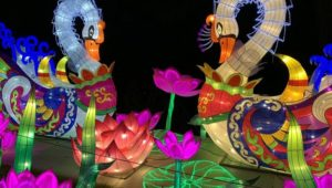 Moonlight Forest Magical Lantern Festival