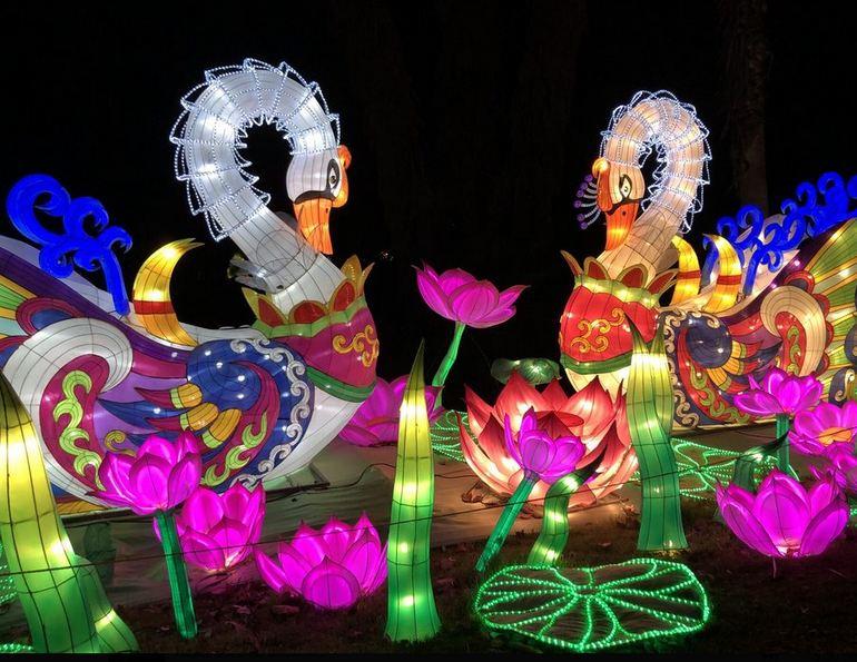Moonlight Forest Magical Lantern Festival